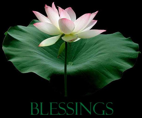 Are You Waiting For A Blessing In The Meantime Prosperity Steps
